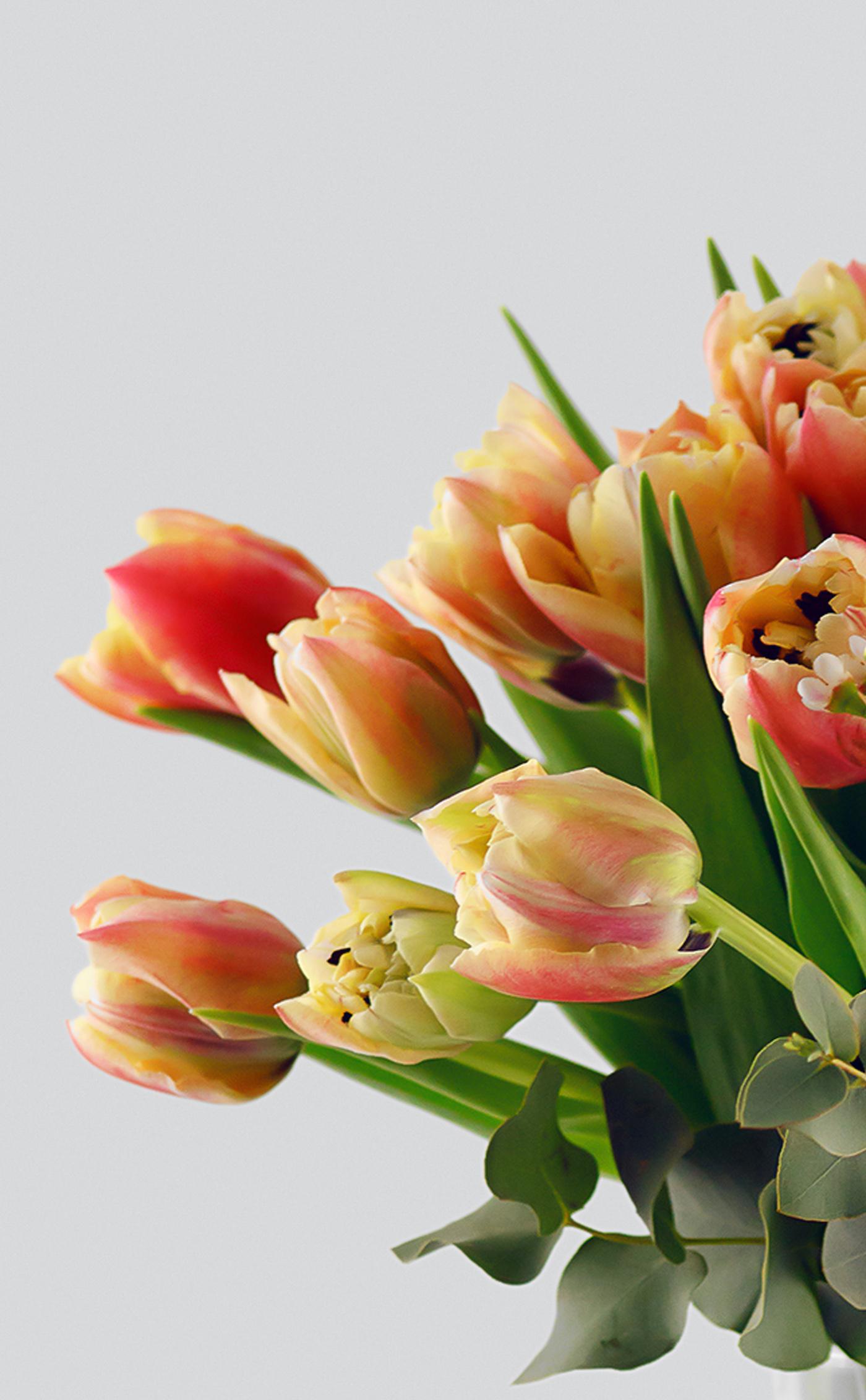 Gėlių puokštė </br>Gimtadienio proga
